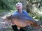 43lb 15oz Acton top lake
